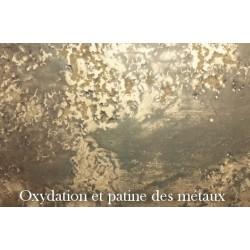 oxydation et patine des métaux